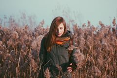 Woman in autumn field Stock Images