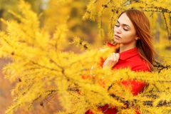 Woman in an autumn forest. Pretty young woman in an autumn forest stock photo