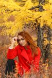 Woman in an autumn forest. Pretty young woman in an autumn forest royalty free stock photography