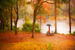 Woman in autumn forest Stock Photo