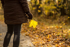 Woman with autumn leaf. Autumn woman with a leaf in hand Stock Image