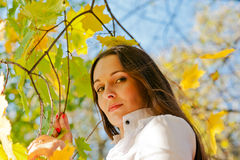 Woman among autumn leaves Royalty Free Stock Photo