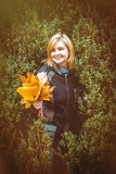 Woman with autumn leaves in hand Royalty Free Stock Photos