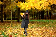 Woman with autumn leaves in hand and fall yellow maple garden background. Portrait of very beautiful young girl in autumn park Royalty Free Stock Image