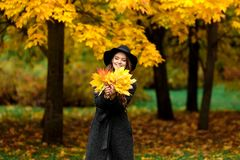 Woman with autumn leaves in hand and fall yellow maple garden background. Young woman with autumn leaves in hand and fall yellow maple garden background Stock Images