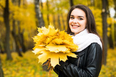 Woman with autumn leaves in hand and fall yellow maple garden background Royalty Free Stock Images