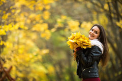 Woman with autumn leaves in hand and fall yellow maple garden background Stock Photography