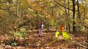 Woman In Autumn Park stock footage
