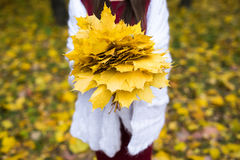 Woman in autumn Stock Image