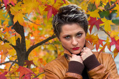 Woman in autumn scenery. Beautiful woman in autumn scenery Stock Images