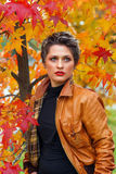 Woman in autumn scenery Stock Image