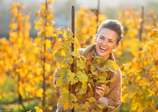 Woman in autumn vineyard looking out from branch Royalty Free Stock Images