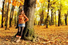 Woman in Autumn wood Stock Image