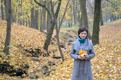 The woman of average years costs in the autumn wood among yellow leaves Stock Photography