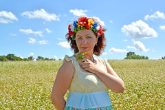 The woman of average years with a wreath on the head holds flowers against the background of the buckwheat field Royalty Free Stock Photo