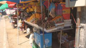 Woman with baby stroller walking along fruit market stock video