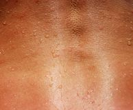 Woman Back Spine Closeup. Woman Back Spine Skin Texture Closeup for Background Stock Images