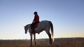 Woman on the background of a landscape on horseback in the middle of the field. Slow motion. Side view. Woman on the background of a beautiful autumn landscape stock footage