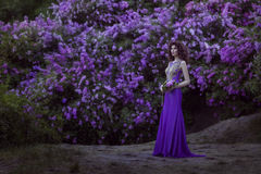Woman on a background of blooming lilac flowers. Royalty Free Stock Photography