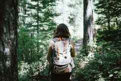 Woman with backpack in forest Stock Image