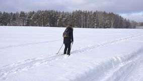 Woman with a backpack skiing in countryside in winter stock video footage