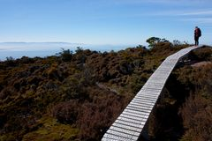 A woman with a backpack standing on a boardwalk on a ridge and looking at the sea at the Humpridge Walk in Fiordland / Southland stock image