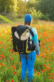 Woman with backpack standing in a fieldt of blooming poppies Stock Image