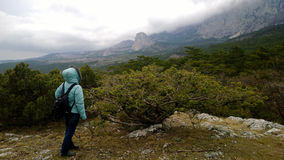 A woman with a backpack stands on a picturesque hilltop and looks into the distance at the mountains. Cloudy foggy weather. A woman with a backpack stands on a Stock Photo
