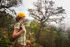 Woman with backpacker enjoying view on mountains in fog. Royalty Free Stock Photos