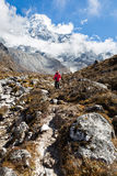 Woman backpacker standing in front Ama Dablam mountain. Vertical Royalty Free Stock Images