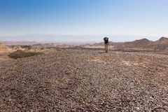 Woman backpacker walking desert. Royalty Free Stock Photography
