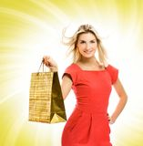 Woman with a bag Stock Photography
