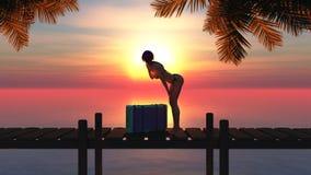 Woman and baggage Stock Image