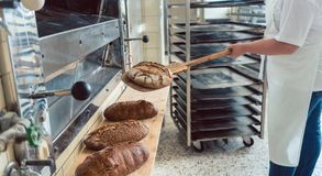 Woman in bakery putting bread on board Stock Photography
