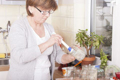 Woman baking Stock Images