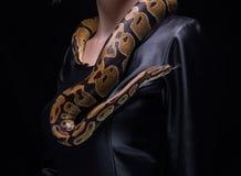 Woman and ball python Stock Photo