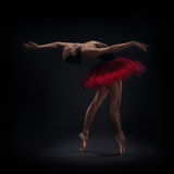 Woman ballet dancer Royalty Free Stock Images