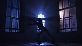 Woman ballet dancer face to viewer makes the pas, silhouette