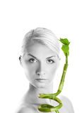 Woman with bamboo leaves Stock Photos