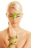 Woman with bamboo plant Stock Images