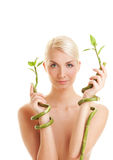 Woman with bamboo plant Royalty Free Stock Image