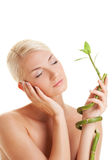 Woman with a bamboo plant Stock Photography