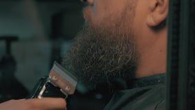 Woman barber trimming beard stock video