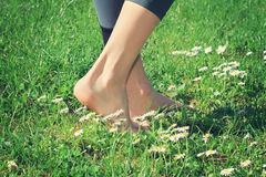 Woman bare feet walking on green grass. Stock Images