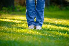 Woman Barefoot Legs on the Green Grass in Garden Stock Image