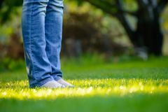 Woman Barefoot Legs on the Green Grass in Garden Stock Photo