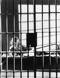 Woman through bars of jail cell Royalty Free Stock Photography