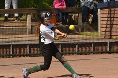 Woman Baseball Player Holding Brown Bat Royalty Free Stock Photography
