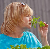 Woman with basil. Woman enjoying the scent of fresh cut basil royalty free stock image