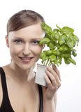 WOMAN WITH BASIL Royalty Free Stock Photography